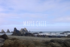 Maple Chile